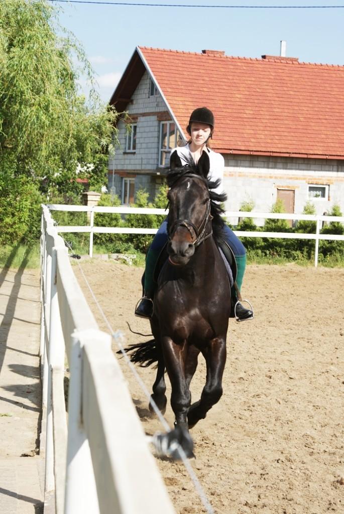 stadnina koni wierzawice jazda konna