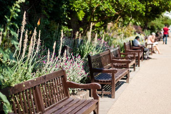Holland Park londyn