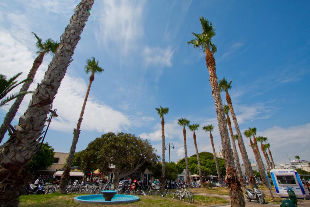 palmy port kos