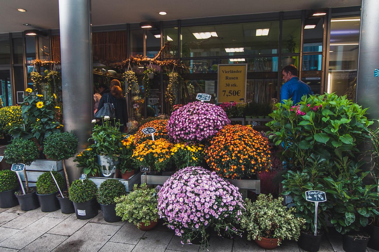 kwiaciarnia hamburg niemcy