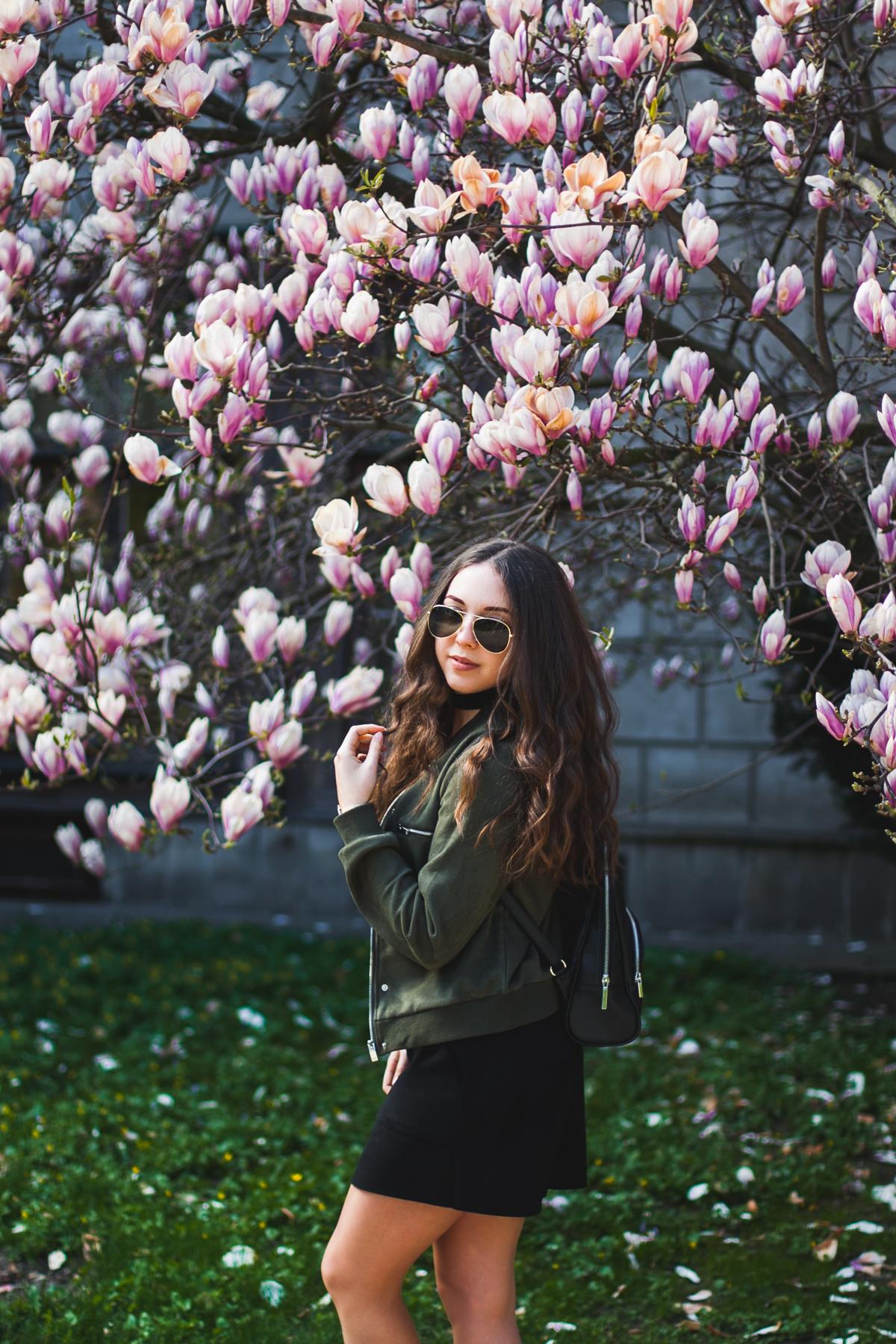 sesja fotograficzna przy magnolii