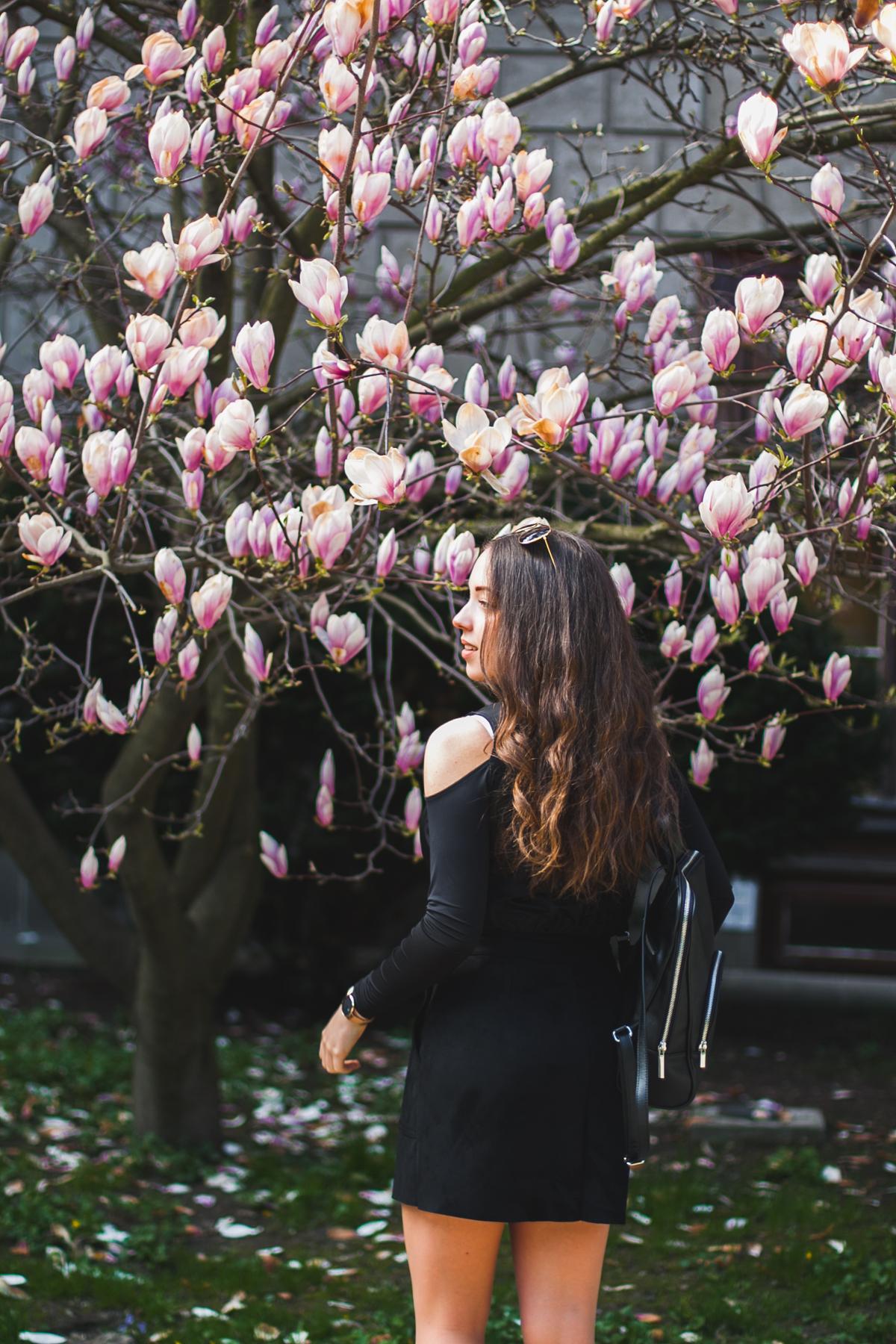 sesja magnolia