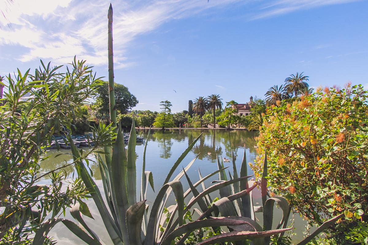 Parc de la Ciutadella barcelona zwiedzanie