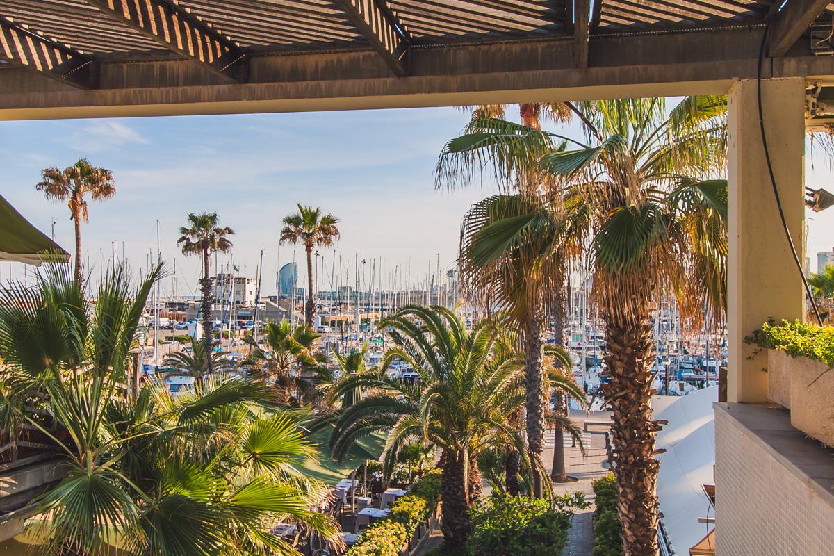 Port Olímpic port w barcelonie