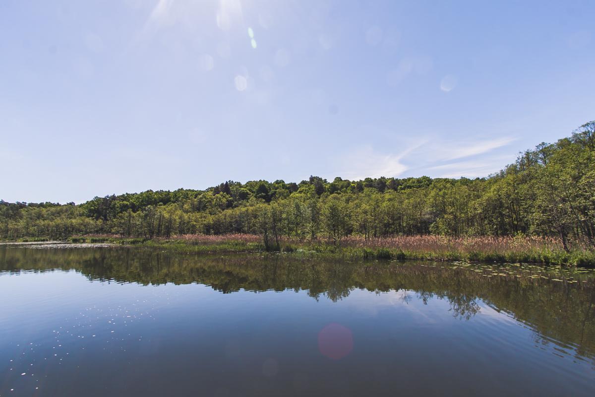 jezioro guzianka wielka mazury