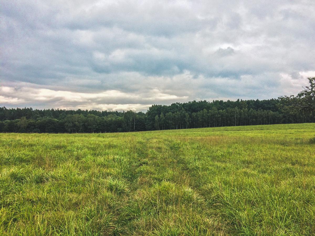 Łąki roztocze