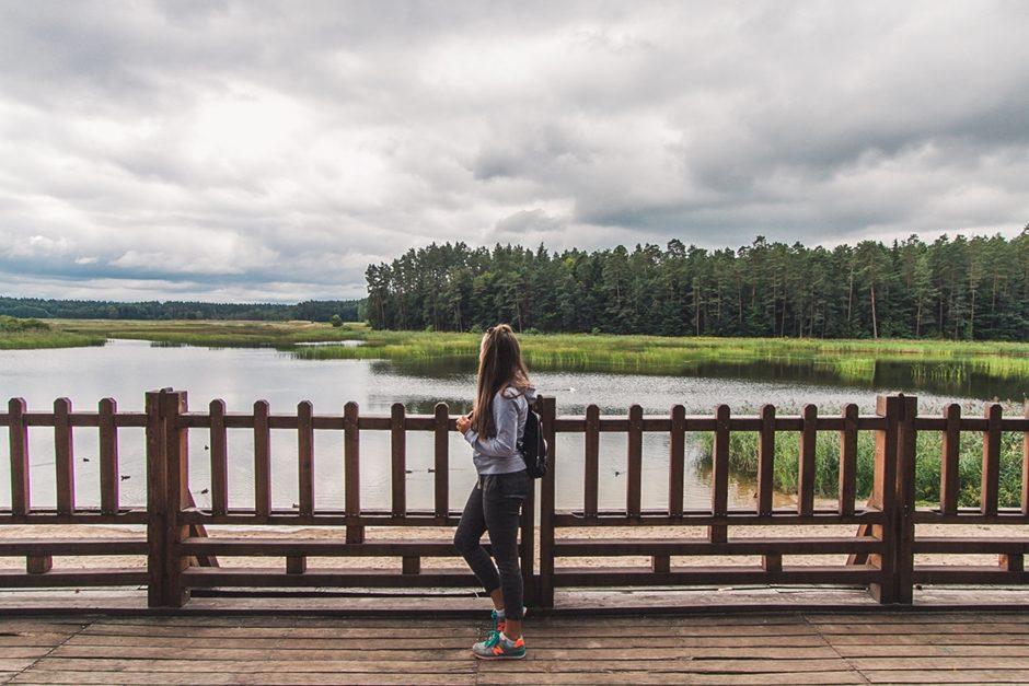 atrakcje roztocza dla turystów - zwierzyniec, zamość i krasnobród