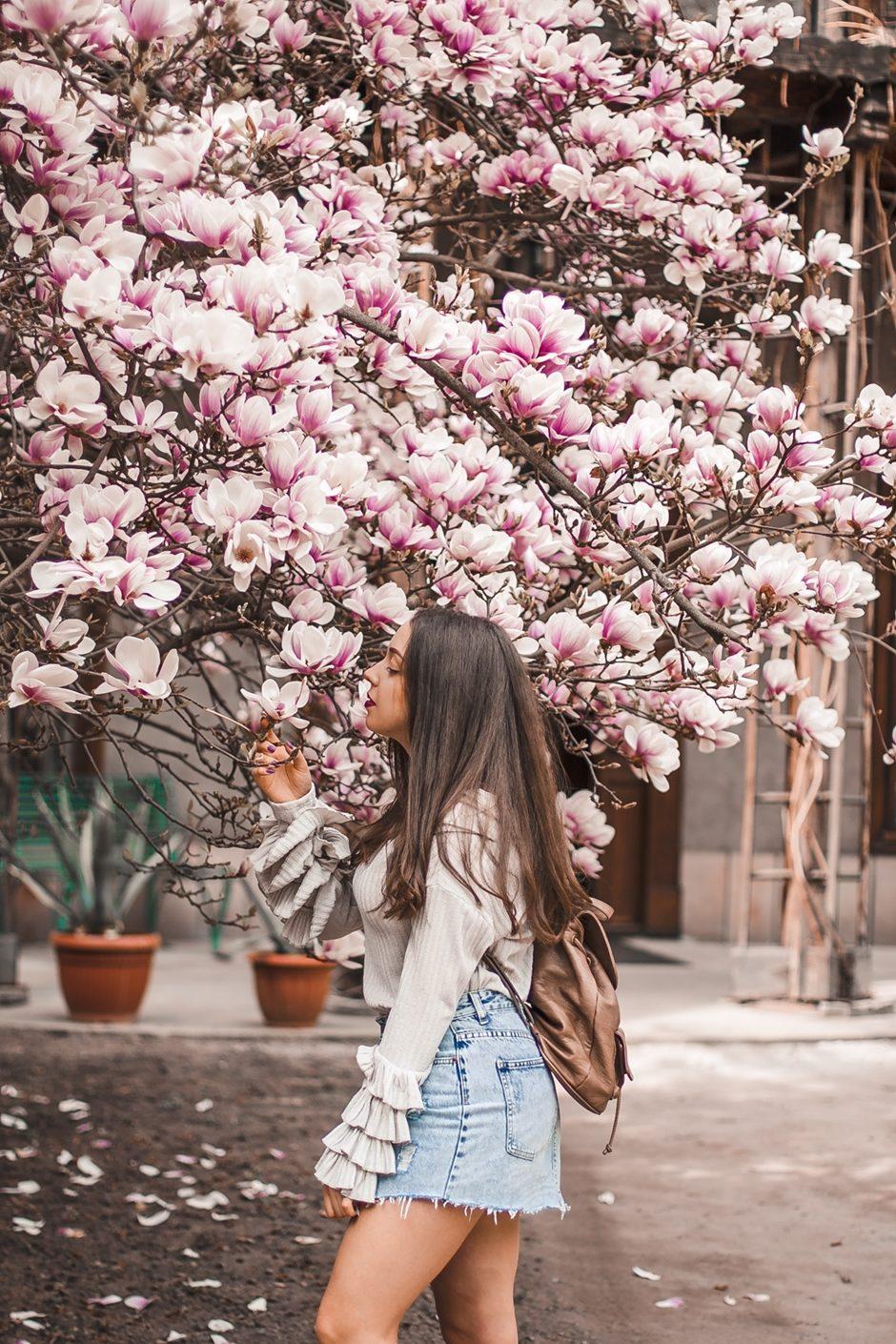 Magnolia rzeszów