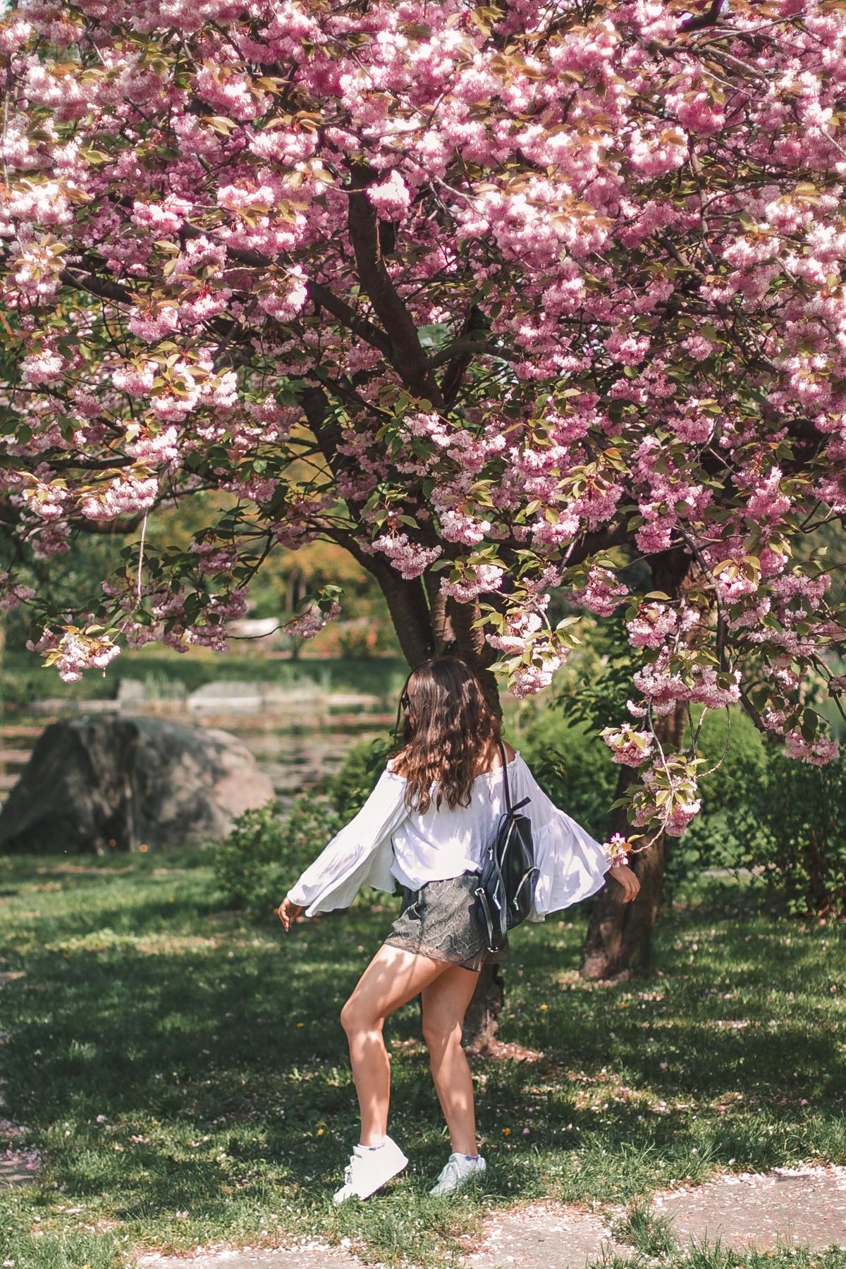 bajkowa sesja z różowymi drzewami wiśnia