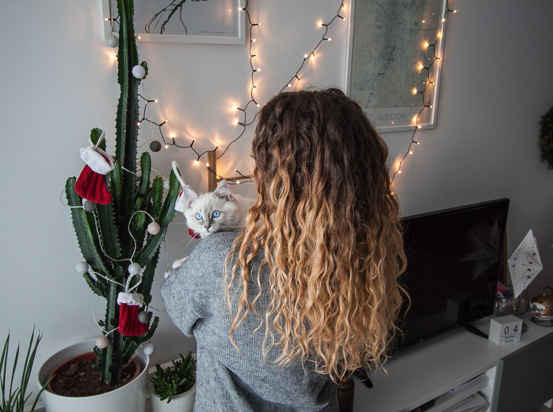 kosmetyki do włosów kręconych recenzja