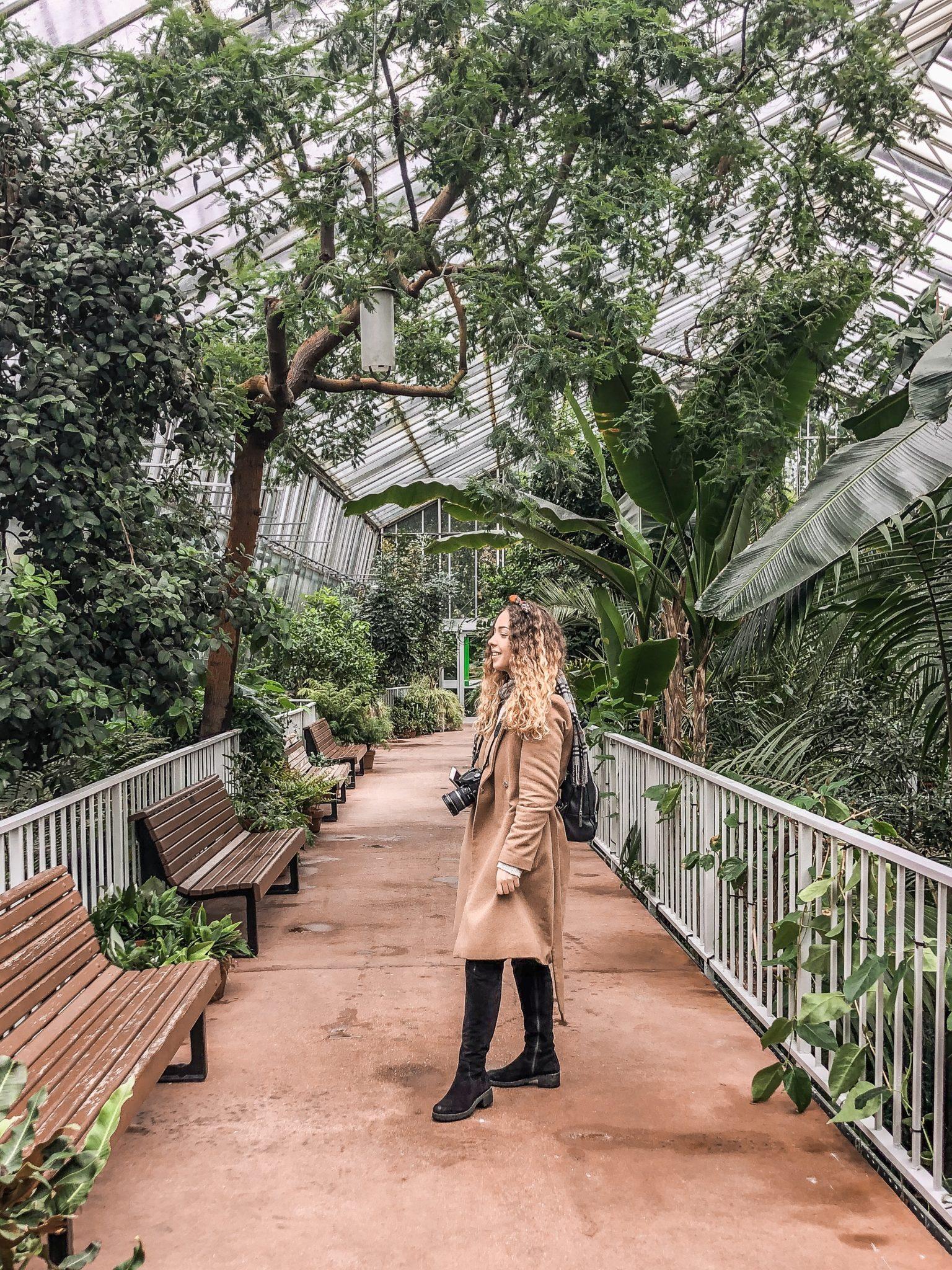 szkocja edynburg ogród