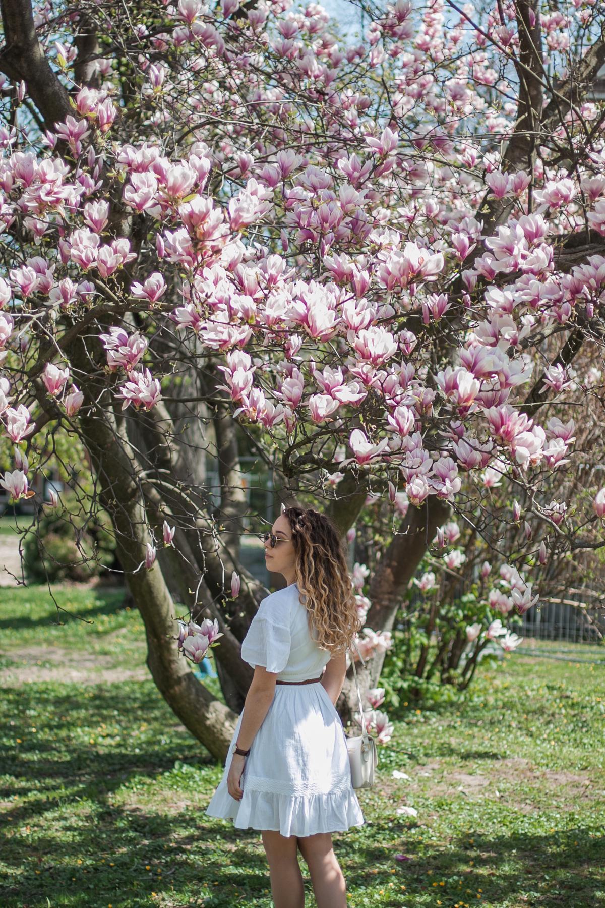 sesja w magnoliach