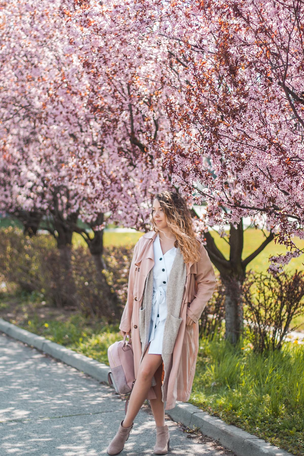 różowe drzewa sesja