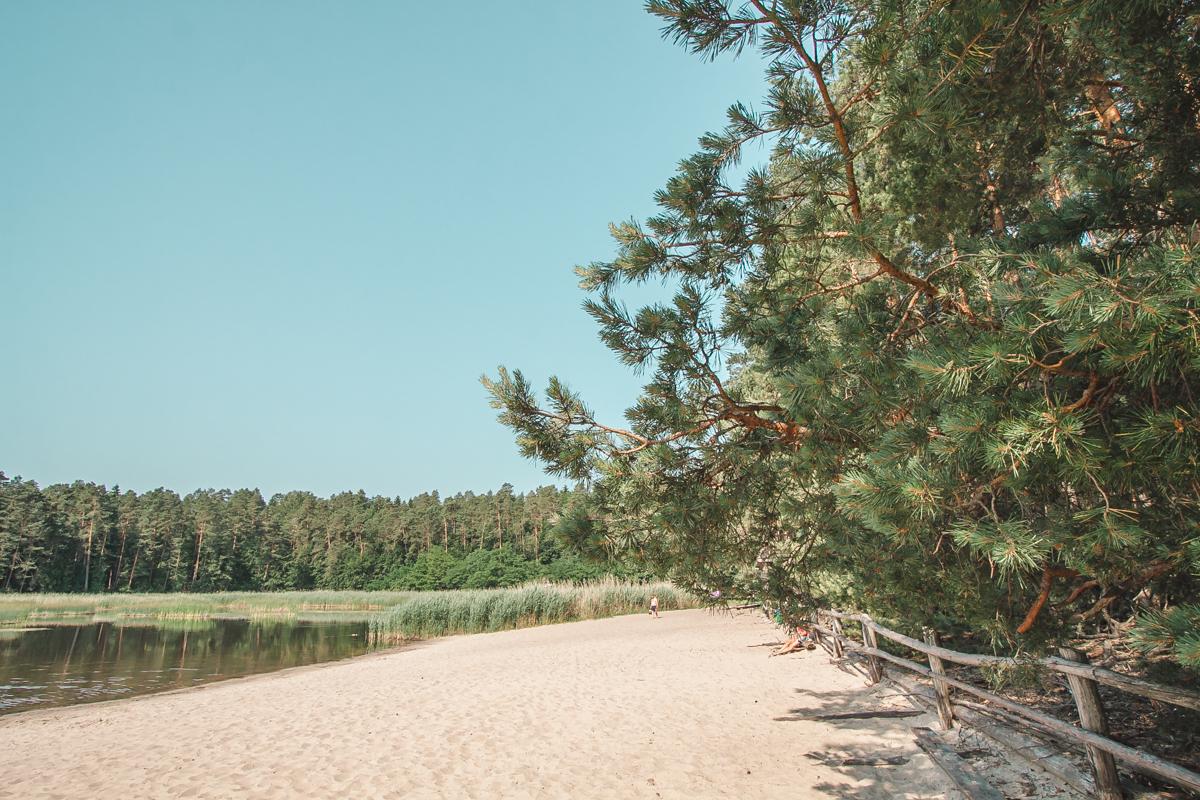 stawy echo plaża w zwierzyńcu