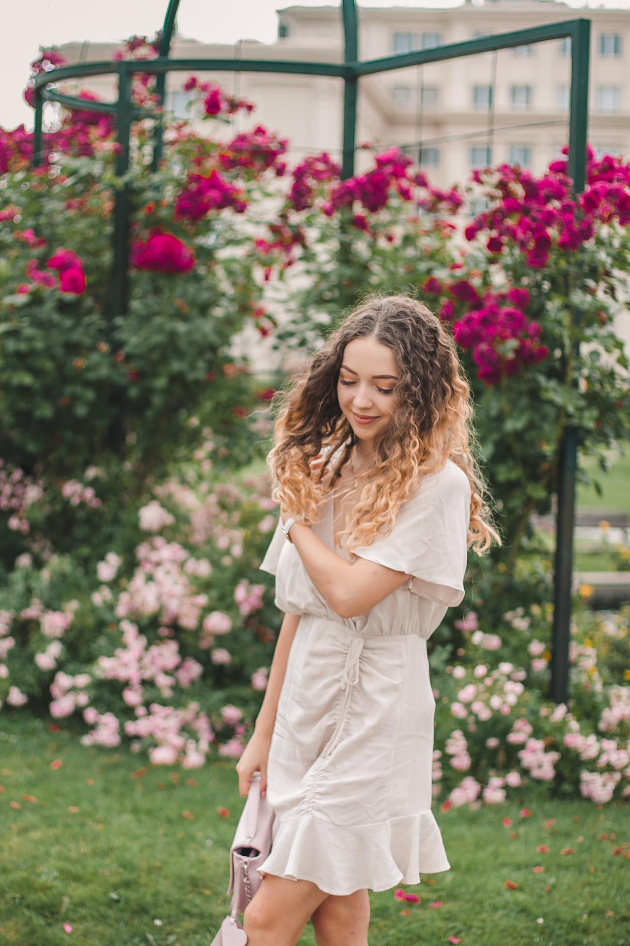 róże rzeszów