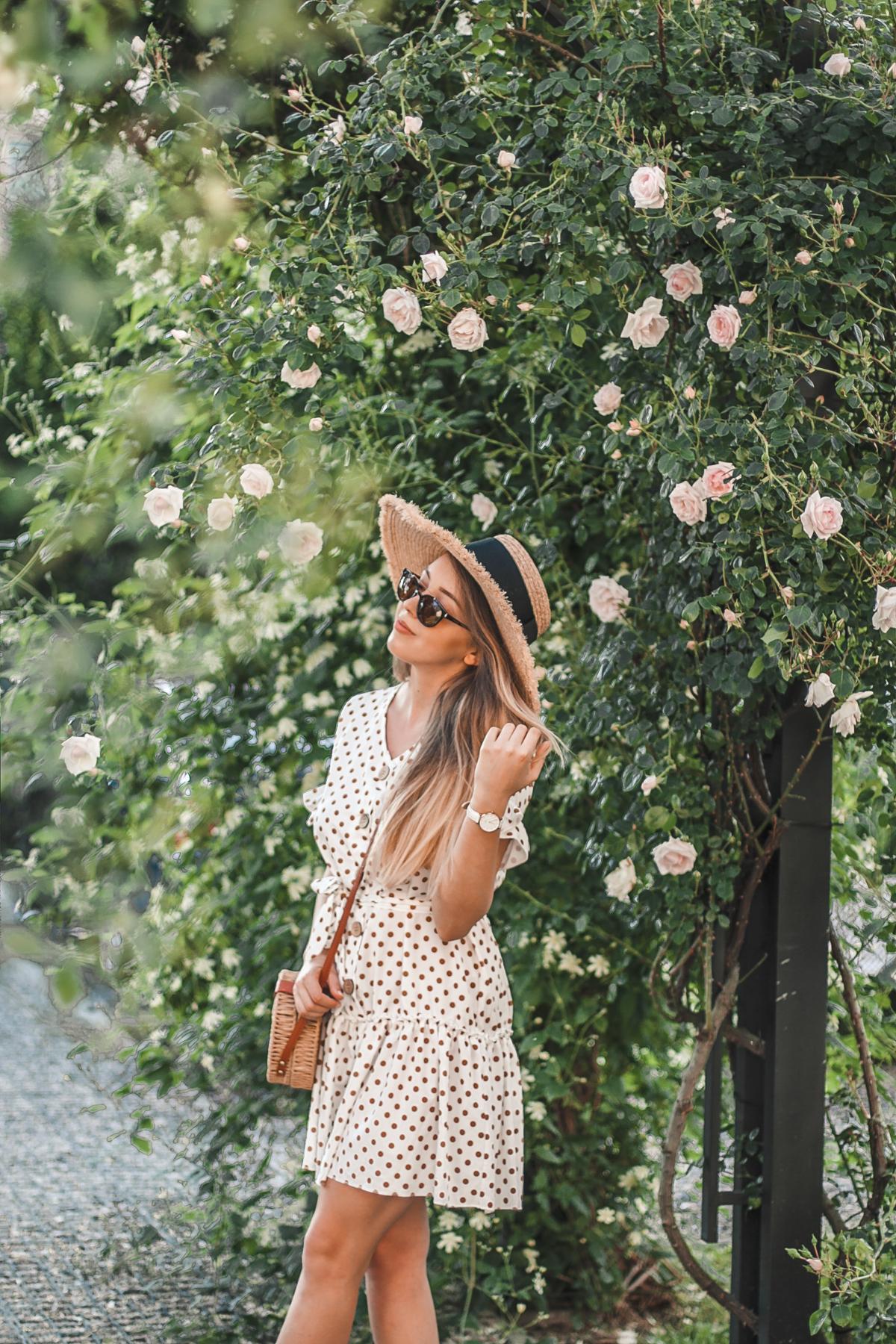 róże rzeszów sukienka w groszki