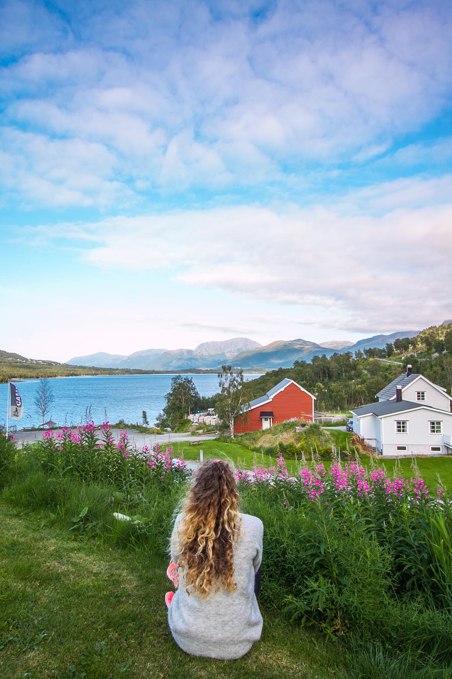 campingi i noclegi w norwegii
