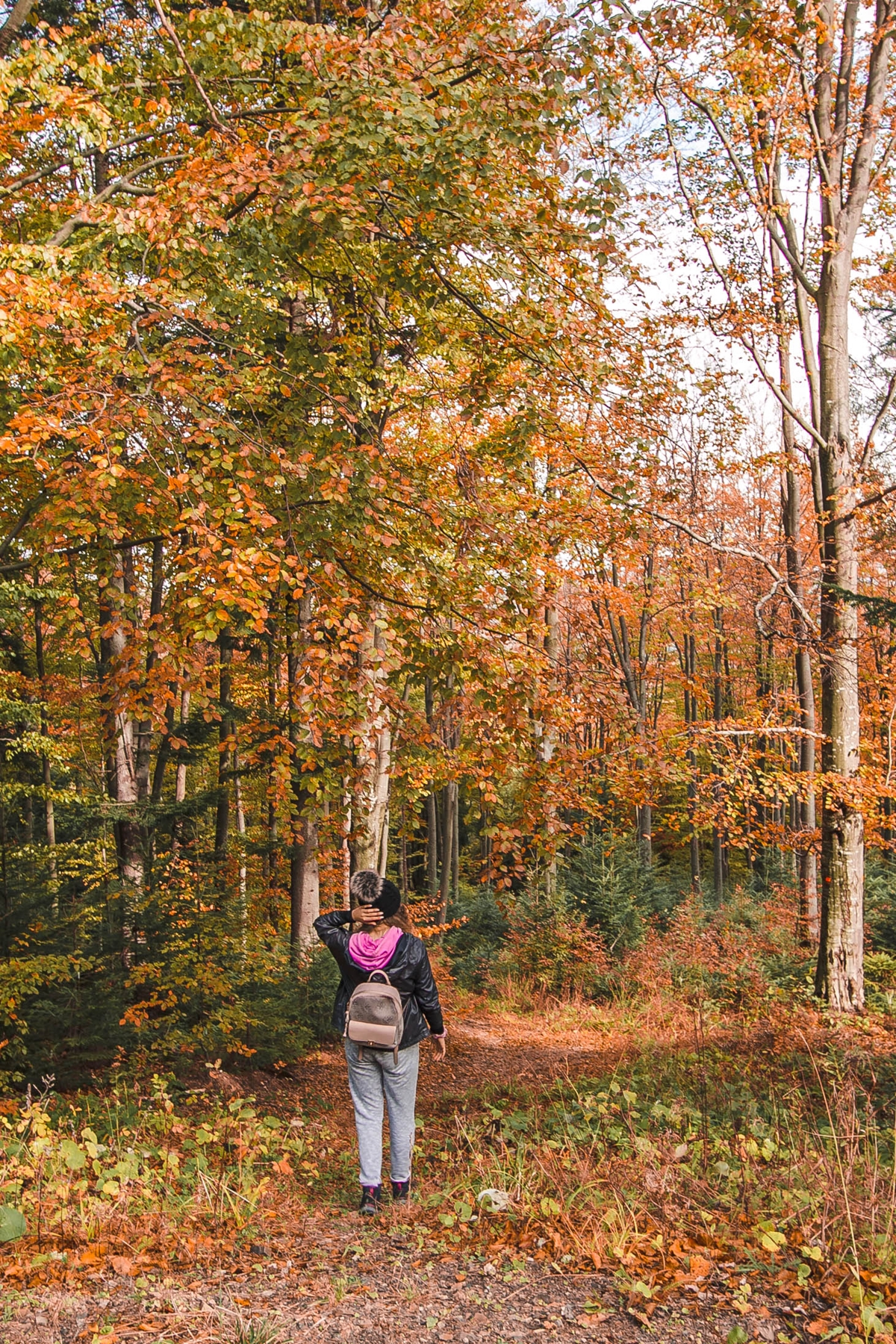 jesień w bieszczadach