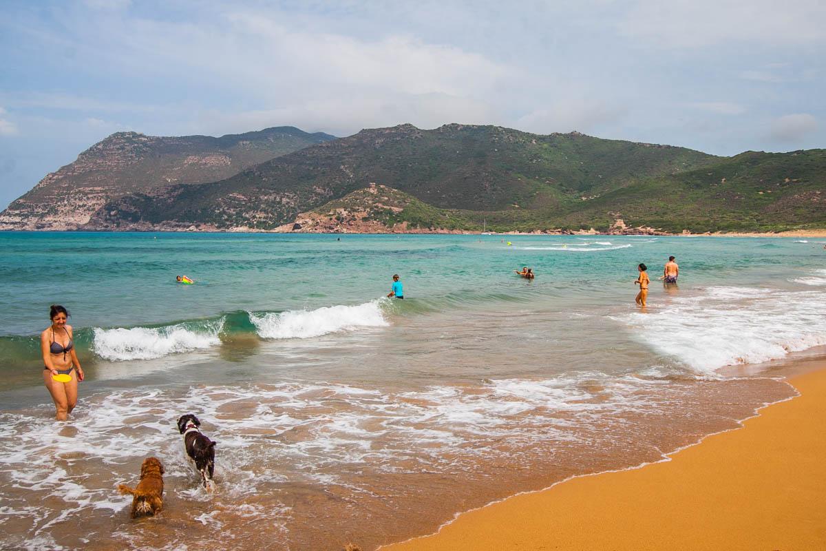 plaża dla psów sardynia