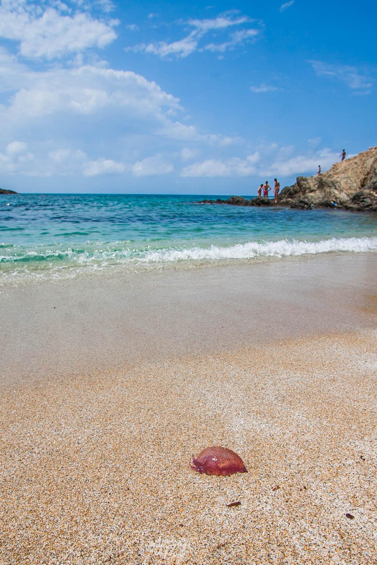 plaża w okolicach alghero